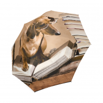 InterestPrint Dachshund Puppy Book Library Foldable Travel Rain Umbrella