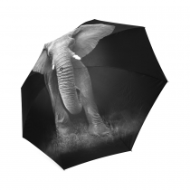 InterestPrint Elephant Foldable Travel Rain Umbrella
