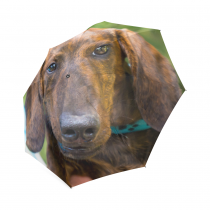 InterestPrint Yellow Dachshund Puppy Foldable Travel Rain Umbrella