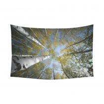 Interestprint High Sky White Trunks Birch Forest Tapestry Wall Hanging Tall Tree Nature View Wall Decor Art for Living Room Bedroom Dorm Cotton Linen Decoration