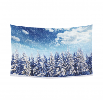 InterestPrint Winter Scene Wall Art Home Decor, Beautiful Winter Landscape with Snowy Trees Cotton Linen Tapestry Wall Hanging Art Sets