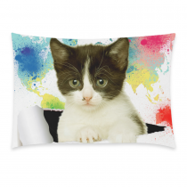 InterestPrint Watercolor World Map Cat Pillowcase Standard Size 20 x 30 Inches One Side for Couch Bed - Cat Looking out Colorful Art Painting Paper Hole Pillow Cases Cover Set Pet Shams Decorative