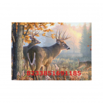 InterestPrint Sweet Home Modern Collection Custom Deer Area Rug 2'7 x 1'8  Indoor Soft Carpet