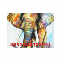 InterestPrint Sweet Home Modern Collection Custom Elephant painting Indoor Soft Carpet Area Rug 7' x 5'