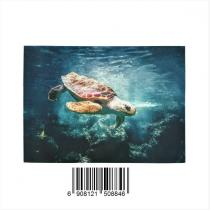 InterestPrint Sweet Home Modern Collection Custom Ocean Turtle Indoor Soft Carpet Area Rug 7' x 5'