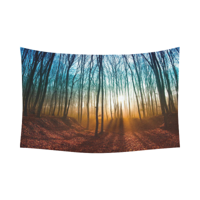 InterestPrint Misty Forest Landscape Wall Art Home Decor, Art Tree Branches with the Rising Sun Sunrise Cotton Linen Tapestry Wall Hanging Art Sets