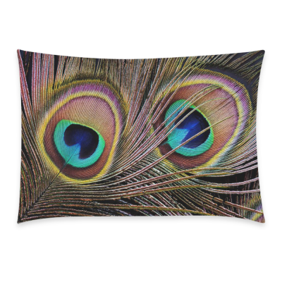 InterestPrint Custom Colorful Peacock Feather Closeup Pattern Pillowcase Standard Size 20 x 30 Inches One Side for Couch Bed - Two Peacock Feather Pillow Cases Cover Set Pet Shams Decorative